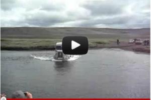 Egon i vandløb i Island
